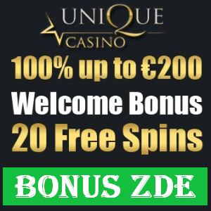 Výdělek online - Unique casino